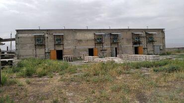 Склады и мастерские - Кыргызстан: Сдаю овощехранилище (холодильник) на 1000 тонн. Круглогодично