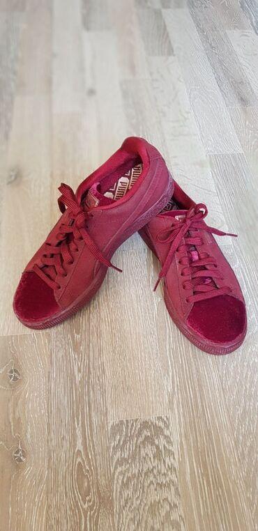 обувь для чихуахуа в Кыргызстан: PUMA новая из 10-10. Размер 37.5. В живую увидите насколько она