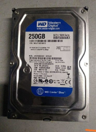жесткие диски western digital в Кыргызстан: WhatsApp Western digital 250gb sata . Здоровье 95%