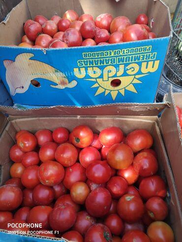 манго фрукт цена бишкек в Кыргызстан: Помидоры Линда высший сорт. Капуста белокочанная оптом и в розницу