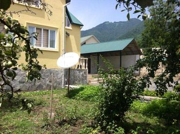 Qebelede kiraye evler в Габала