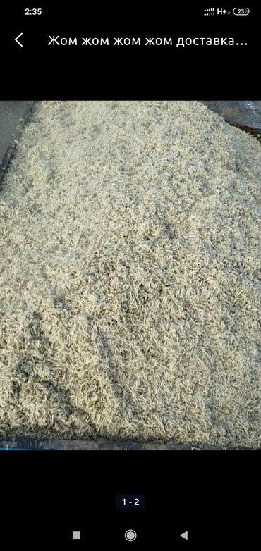 Жом жом жом   корм для крс . Доставка зил 9-9.5 тонн