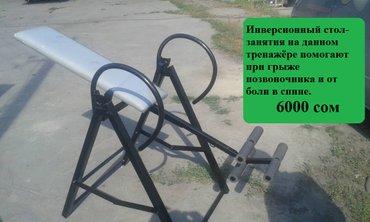 Инверсионный стол поможет от болей в в Бишкек