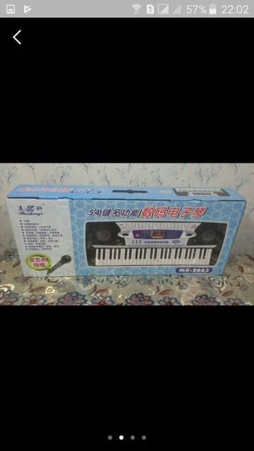 Sintezator - Mk mikrafonlu 4 Oktava yarım 54 klaviş