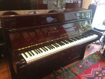 pianolar - Azərbaycan: Hormetli mushteriler: Royal musiqi aletleri magazalar shebekesi