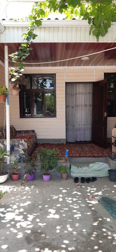 продается-дом-джалал-абад-благо в Кыргызстан: Продается дом в джалал абаде по улице чехова 14. 5,5 соток количество