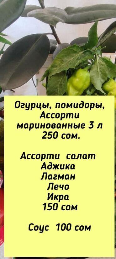 хлебопечка бишкек in Кыргызстан   ДРУГОЙ ДОМАШНИЙ ДЕКОР: Дорогие друзья, Самые вкусные и домашние зимние заготовочки вы можете