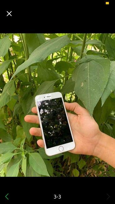 набор форс 94 предмета в Кыргызстан: Новый iPhone 6 64 ГБ Серебристый