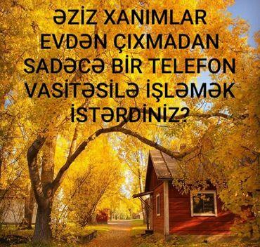 vasitcisiz 1 otaqli mnzil almaq - Azərbaycan: Şəbəkə marketinqi məsləhətçisi. İstənilən yaş. Natamam iş günü