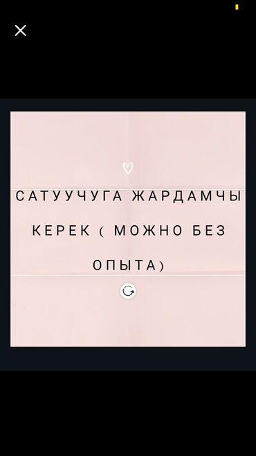Работа - Бишкек: Продавец-консультант. С опытом. 5/2