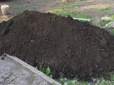Чернозём горный рыхлы без сорняков Плодородный грунт для растений