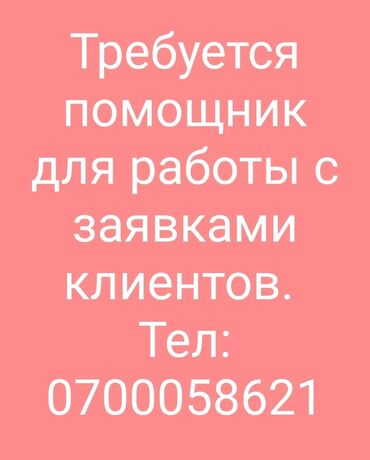 таблетки для роста в бишкеке in Кыргызстан   ПЛАТЬЯ: Требуется помощник завсклада для работы с заявками клиентов. График