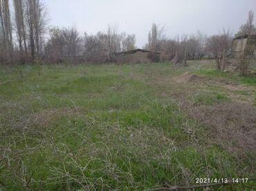 Недвижимость - Гавриловка: 12 соток, Для строительства, Срочная продажа