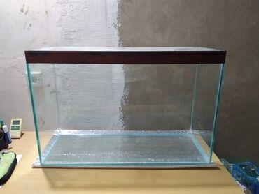Животные - Дюбенди: Аквариум  Длина 80 см Ширина 30 см Высота 50 см