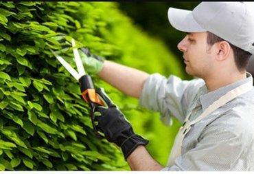 Требуется: садовник в Ош