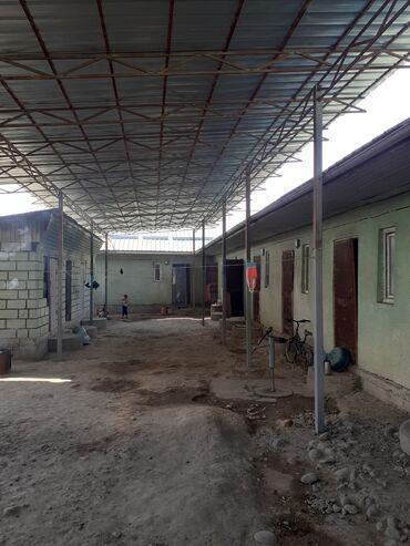 Недвижимость - Селекционное: 8 кв. м, Студия, Забор, огорожен