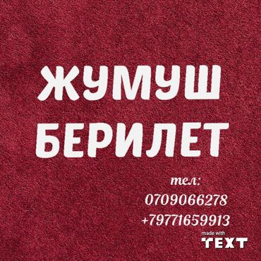 Поиск сотрудников (вакансии) - Бишкек: Тез арада реализаторго жардамчы кыздар керек клиентерди тейлоого 18-46