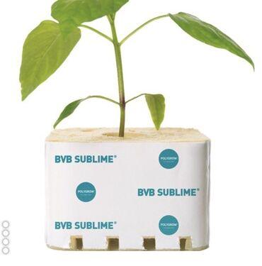 Субстраты tm speland для гидропоники - для теплиц. Можно выращивать и