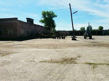 Продажа складов и мастерских в Кыргызстан: Продаю большой овощной склад (900м2) с прилегающей территорией (1