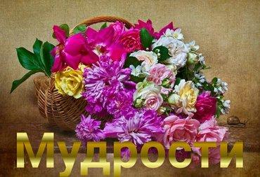 Требуется срочно 2 парня помощники в частную организацию. приём заказо в Бишкек