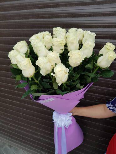 Акция 25% скидка на 1метр розы Голландия 25 голландских роз 1