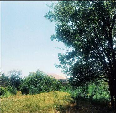 damci suvarma sistemleri - Azərbaycan: Satılır 8 sot mülkiyyətçidən