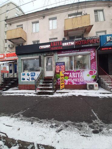 купи слона для детей в Кыргызстан: Продаю‼ офисное помещение с действующим бизнесом