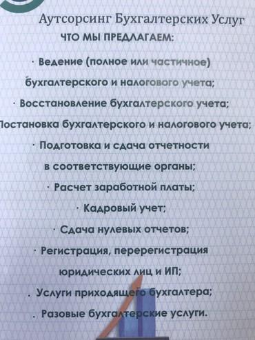 услуги сантехработ в Кыргызстан: Консалтинговая компания предлагает все виды бухгалтерских услуг