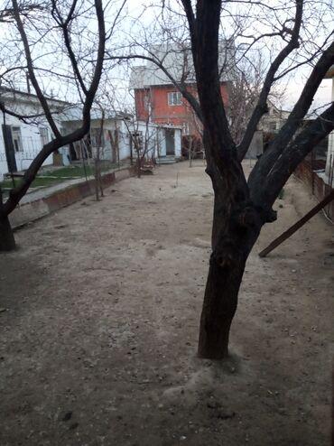 продам опилки в Кыргызстан: Продается дом 160 кв. м, 10 комнат, Старый ремонт