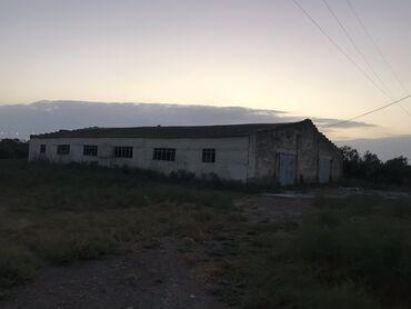 43 elan   DAŞINMAZ ƏMLAK: 6000 sot, Kənd təsərrüfatı, Kupça (Çıxarış), Bələdiyyə