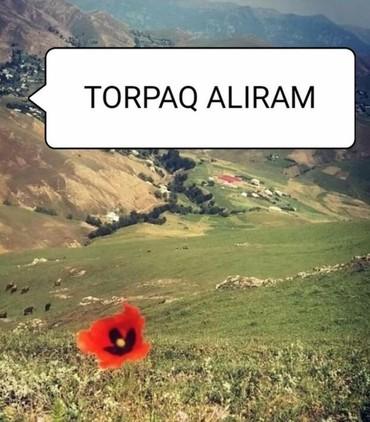 torpaq aliram - Azərbaycan: Satış sot