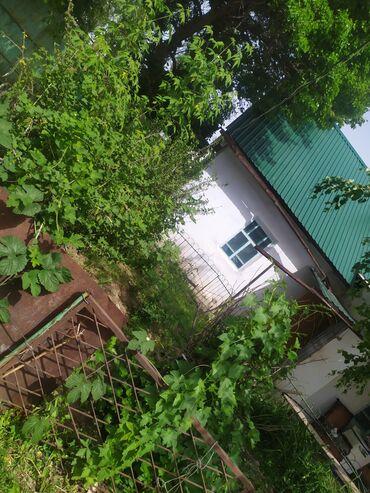 Недвижимость - Таш-Мойнок: 53 кв. м 3 комнаты, Сарай, Подвал, погреб