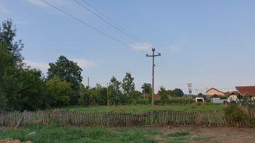 764 oglasa: 18 ares, Poljoprivredno zemljište, Vlasnik