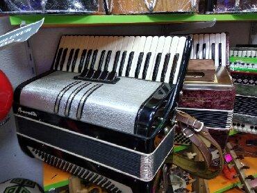 Аккордеоны - Азербайджан: Akkordeon akkord