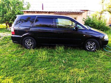Транспорт - Михайловка: Honda Odyssey 2.3 л. 2003