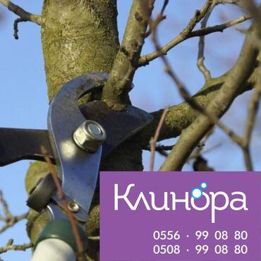 тур в алматы бишкек в Кыргызстан: Уборка дворов, подъездов. Обрезка кустарников - низкие цены, гарантия
