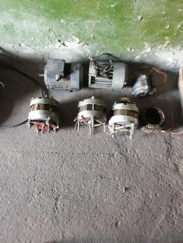 Электро двигателя. в Лебединовка