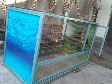 Животные - Чолпон-Ата: Клетка для попугаев, 5000 сом. Размеры: длина 1 м 24 см, ширина: 64 см