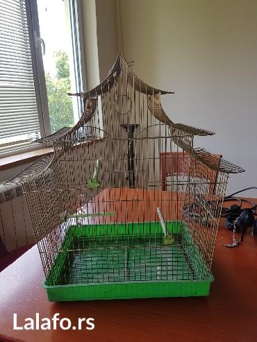 Kavez za ptice! Rasprodaja-selidba! Dostava gratis za siri centar - Belgrade