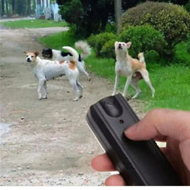 Ультразвуковой отпугиватель собак