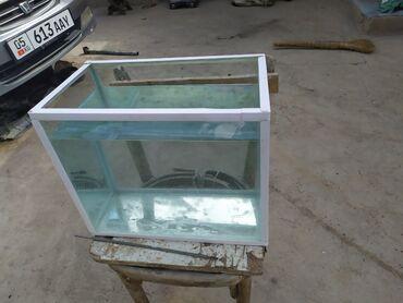 Продам аквариум 20 литровый