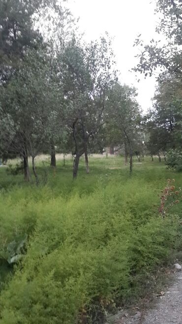 Продам - Бишкек: Продам 17 соток Строительство от собственника