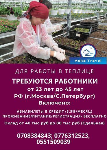 Требуются - Кыргызстан: 000474 | Россия. Сельское хозяйство. 6/1