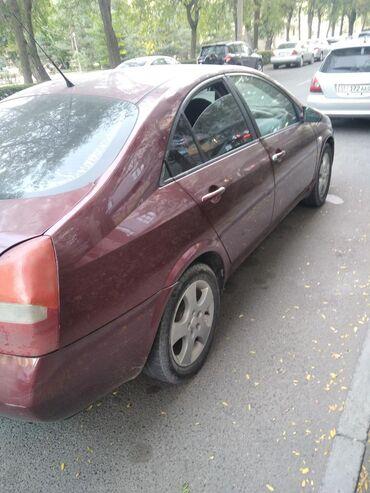 Nissan - Кыргызстан: Nissan Primera 2 л. 2002 | 1 км