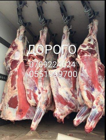 В колбасный цех принимаем коров, быков, телок и лошадей а также