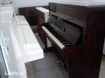 Bakı şəhərində Petrof markasından nadir rastlanan 3 pedallı Concertino model piano -