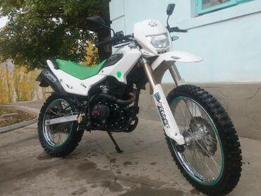 Мотоциклы и мопеды - Кыргызстан: Эндура ирбис