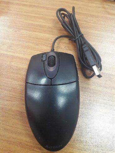 sican - Azərbaycan: Mouse siçan