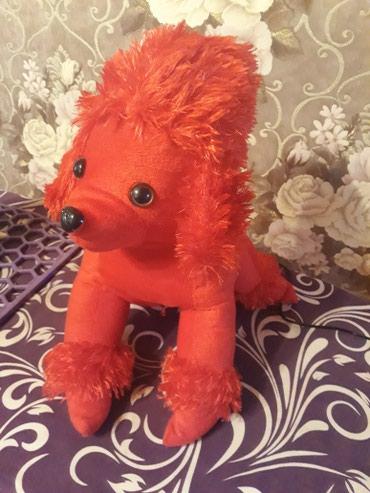 pişik yumşaq uşaq oyuncaqları - Azərbaycan: Yumsaq oyuncaq