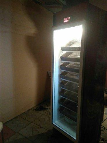 Bakı şəhərində Inkubator 500 yumurtalıq tam avtomatik inkubator. Yumurta sayına